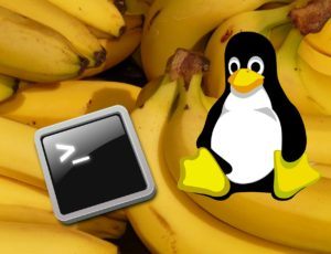 Getting Started with BananaPI Linux